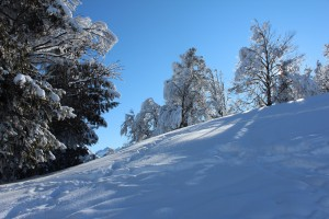 Verschneite Landschaften sind überall bezaubernd